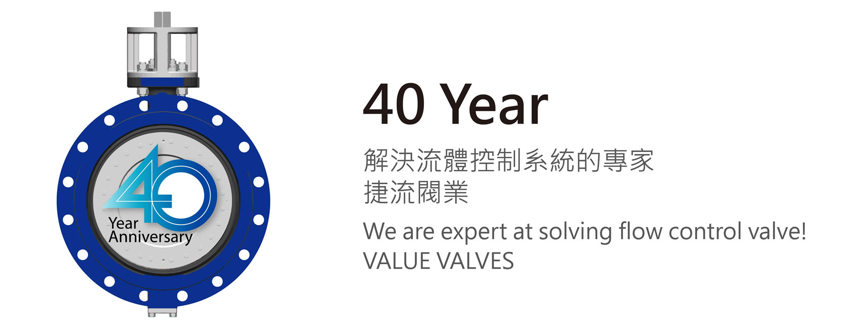 Control Valve | VALUE VALVES CO , LTD  | Official Website